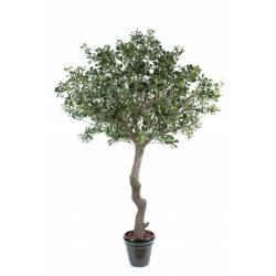 Pittosporum artificial TREE