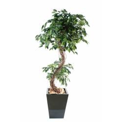 Ficus artificiel S