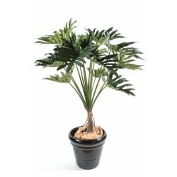 Philodendron artificial SELLOUM *15