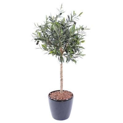 Olive tree artificial HEAD