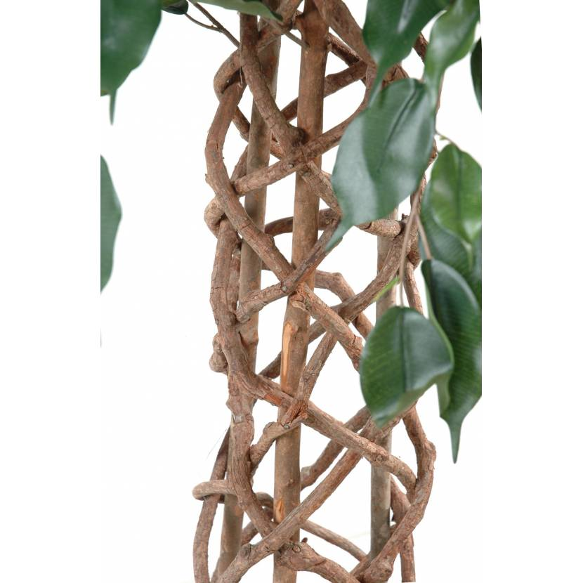 Ficus artificiel cage for Ficus artificiel