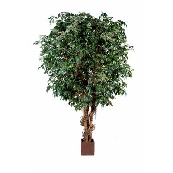 Ficus artificial GEANT