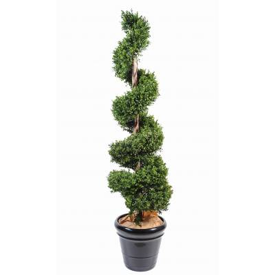 Boxwood artificial SPIRAL NEW