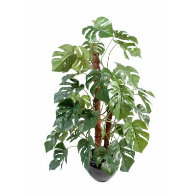 Philodendron artificial GUARDIAN COCO