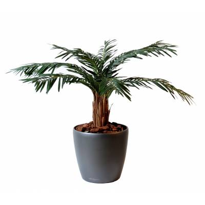 Cycas artificiel PALM