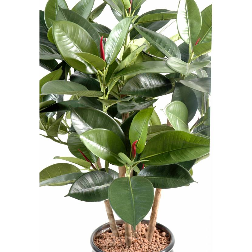 Ficus artificiel elastica buisson rubber plant multitree for Ficus artificiel