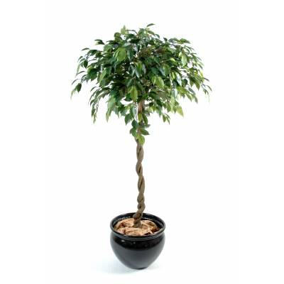 Ficus artificial BALL NATASJA