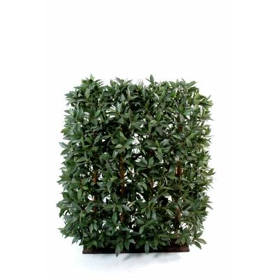 LAUREL Artificial HEDGE to ALL SIDES