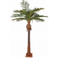 Palm tree, artificial COCONUT