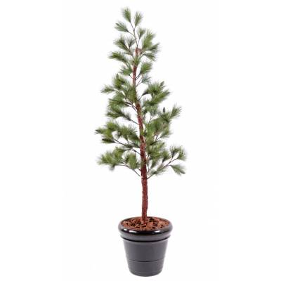 Pine artificial NEW