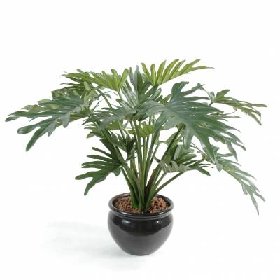 Philodendron artificiel SELLOUM