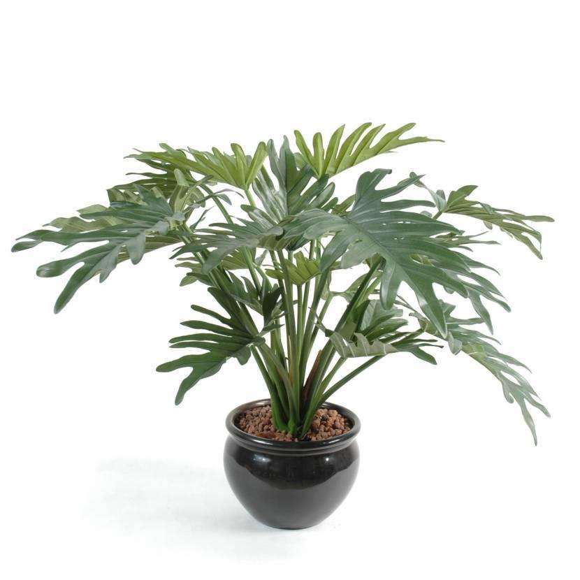 Philodendron artificial SELLOUM