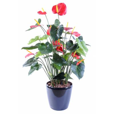 Anthurium artificiel *13
