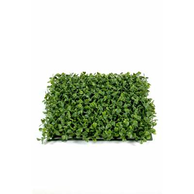 Boxwood artificial PLATE NEW