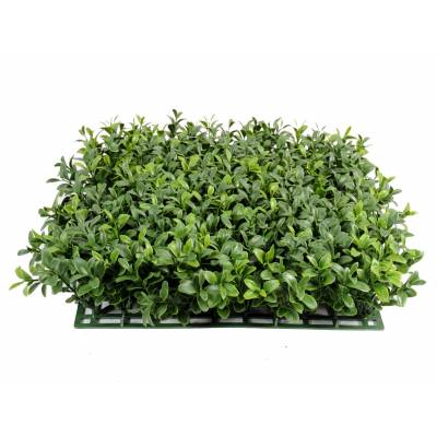 Boxwood artificial PLATE NEW *300