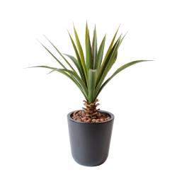 Aloe artificielle ferox diam 40