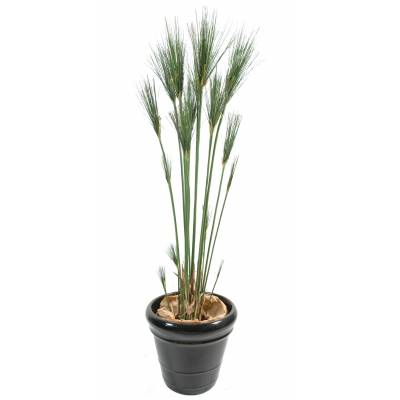 Papyrus artificial CYPERUS