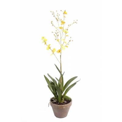 Orchid artificial DANCING LADY POT EARTH