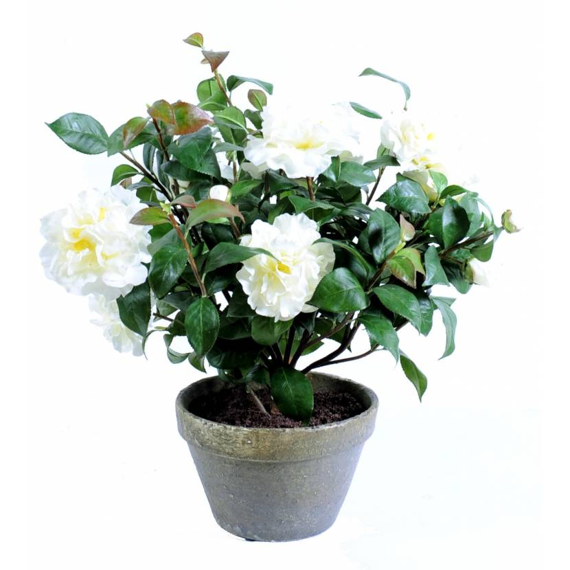 camelia artificiel pot terre
