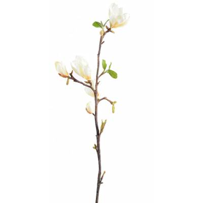 Magnolia artificial 83