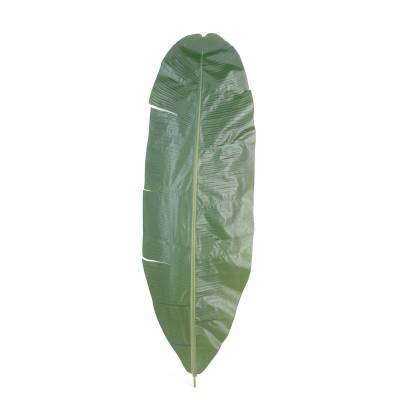 Banana, artificial LEAF