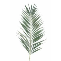 Palm artificial PALM tree MAJESTY