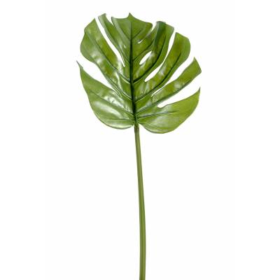 Philodendron artificial STEM