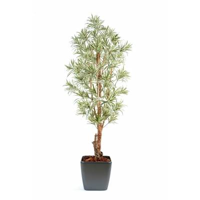 Dracaena artificial POTTED CARRE