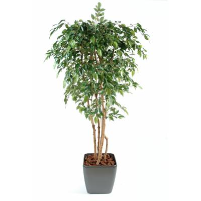 Ficus artificiel MULTITREE NATASJA EN POT CARRE