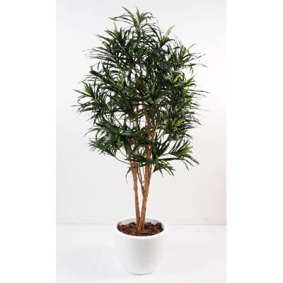 Dracaena artificiel EN POT ROND