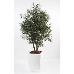 Olive tree artificial bush