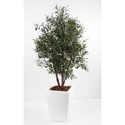 Olivier artificial bush