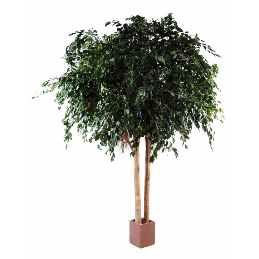 Ficus artificiel exotica geant for Ficus artificiel