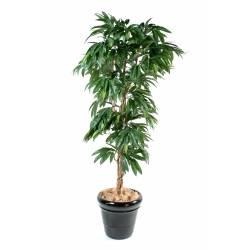 Mango tree artificial