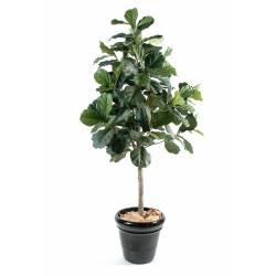Lyrata artificial (fig tree)