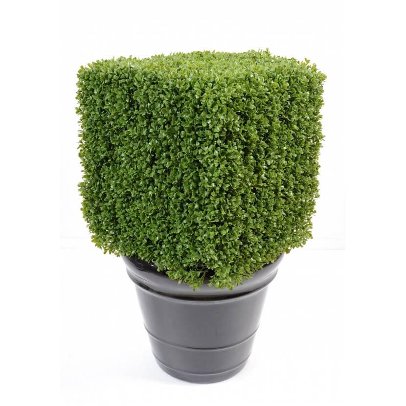Buis artificiel regular carre for Arbuste buis artificiel