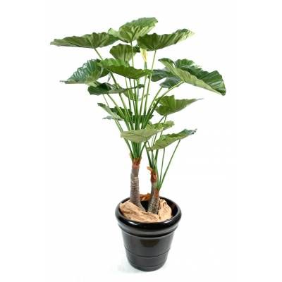 Alocasia artificiel calidora 3 troncs
