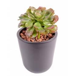 Succulent artificiel 15