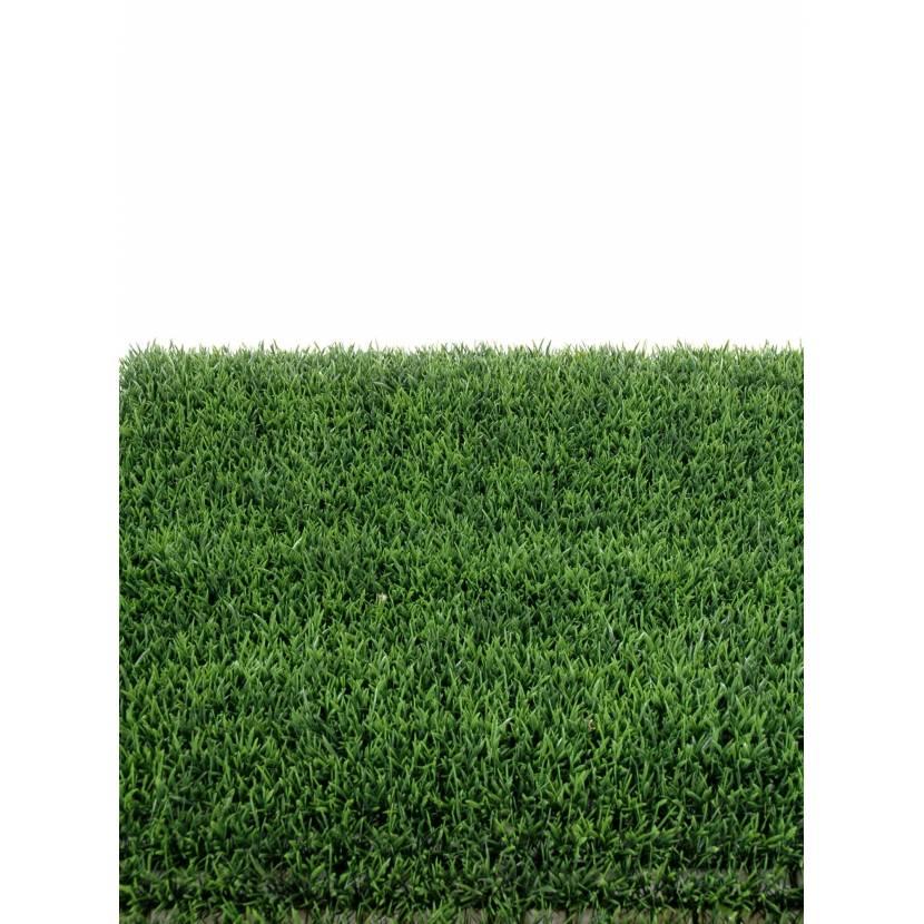 GRASS PLATE 70 (promo net)