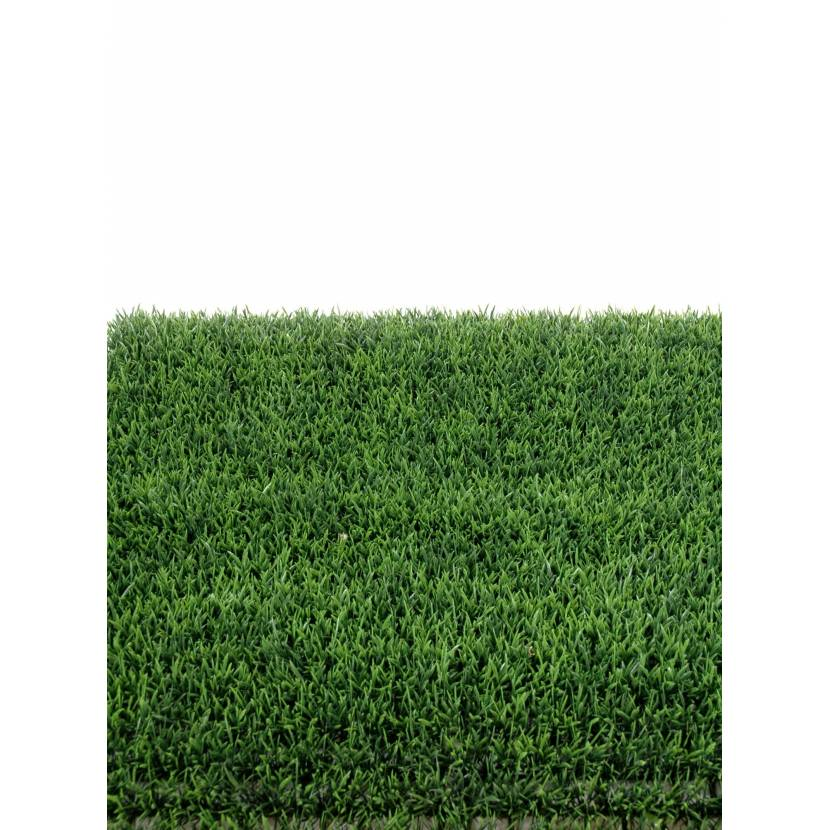 HERBE PLAQUE 70 (promo net)