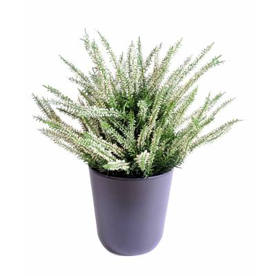 Bruyere artificial LARGE POTTED