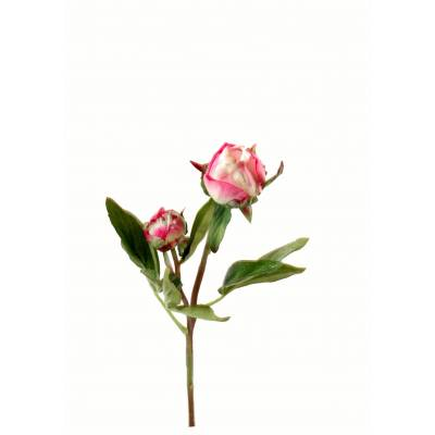 Pivoine artificielle BOUTON*2 fresh touch