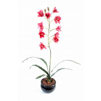 Cymbidium artificiel