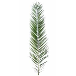 Palm artificial PHOENIX CANARIENSIS