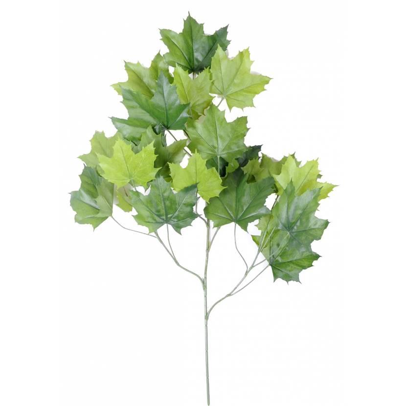 PLANE-TREE SPRAY*23