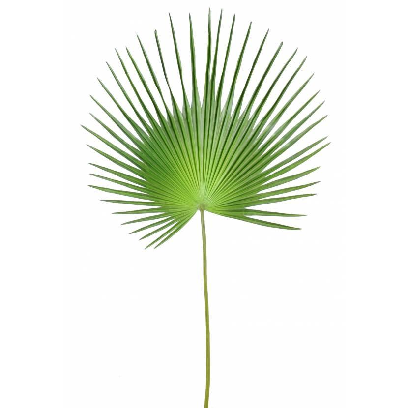 Palme artificielle palmier camerus - Feuille de palmier artificielle ...