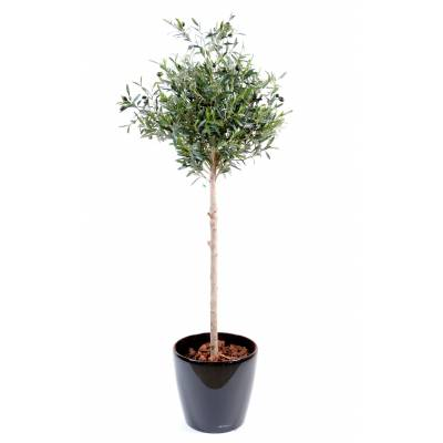 Olive tree artificial head pot round