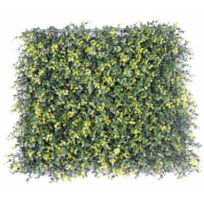Boxwood artificial PLATE 50*50 8CM