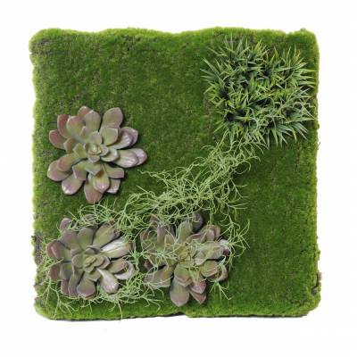 Artificial wall PLANT 50*50