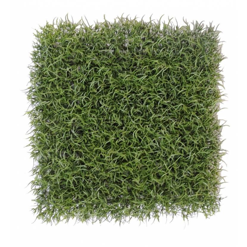 FINE GRASS PLAQUE 27*27